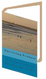 Surviving probate handbook
